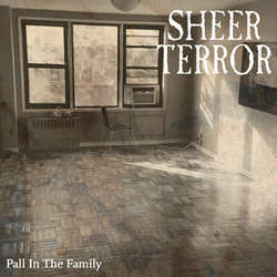 SHEER TERROR A Pall In The Family 7""